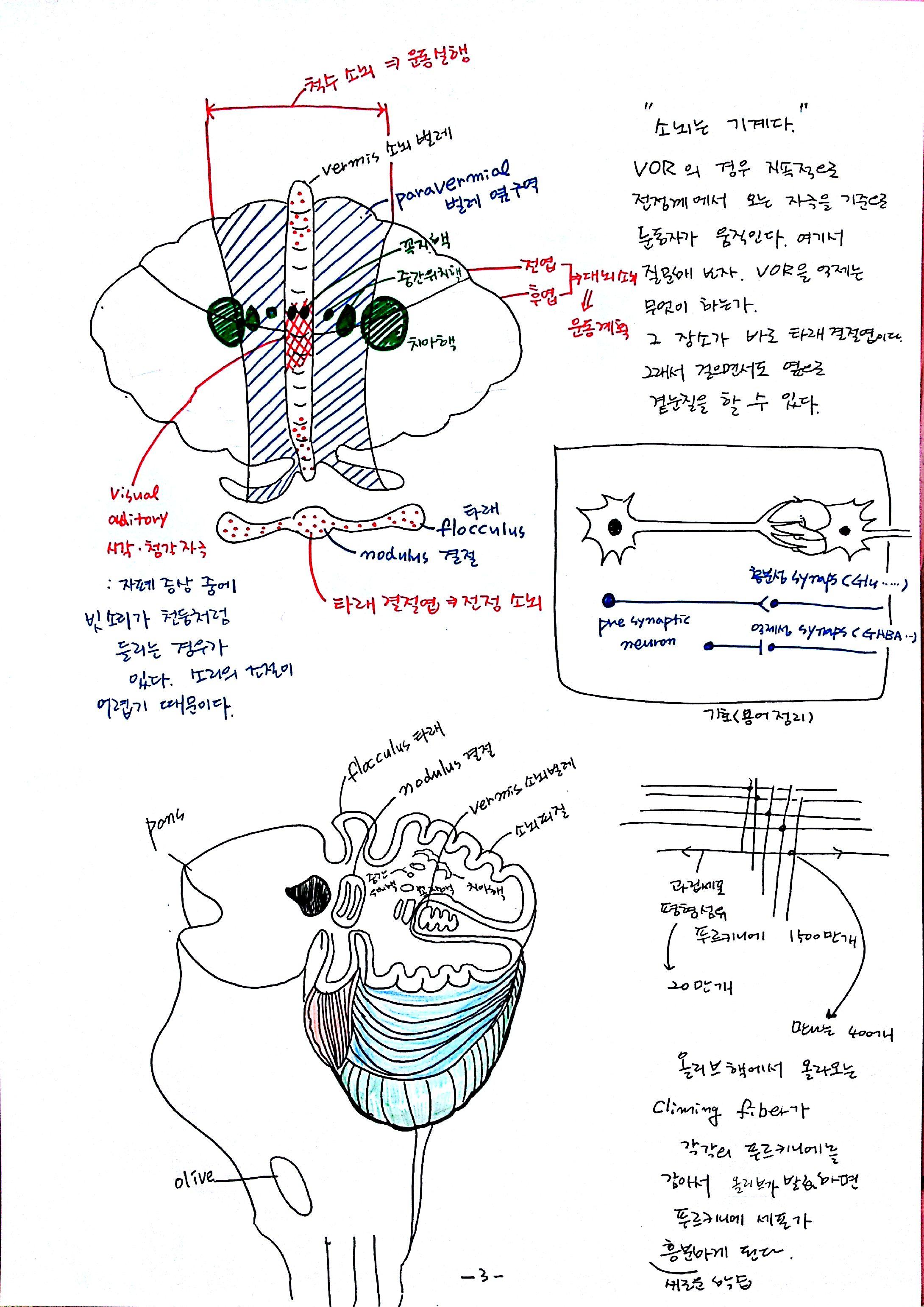 03-2012-10-15_12-54-31_791.jpg