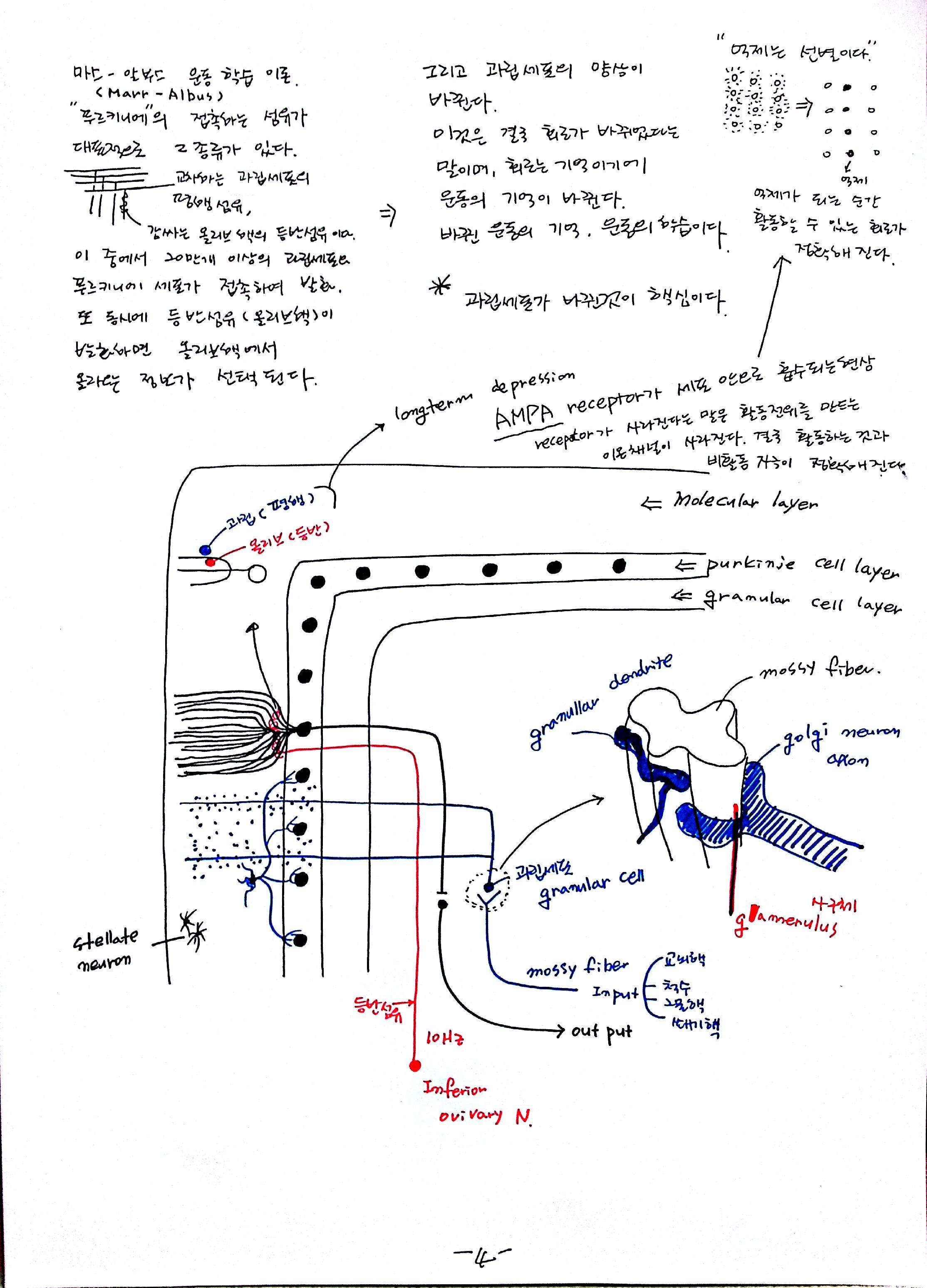 04-2012-10-15_12-55-24_230.jpg